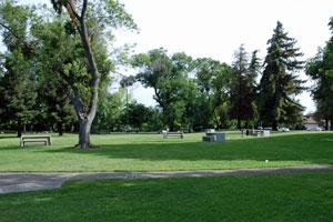 Stockton 39 S Best Parks Stockton 39 S Treasures